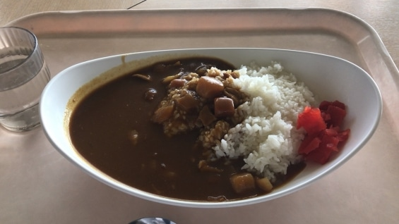 文京区役所職員食堂カレー